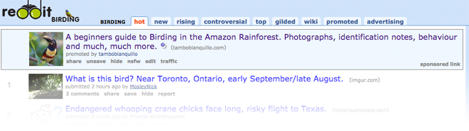 paid travel content promotion with reddit