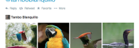 Case Study: Content marketing on the wild side