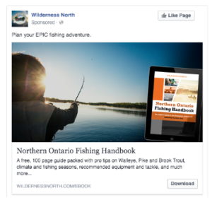 facebook newsfeed ads for content promotion amplification